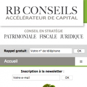 creation web mobile conseiller fiscal paris